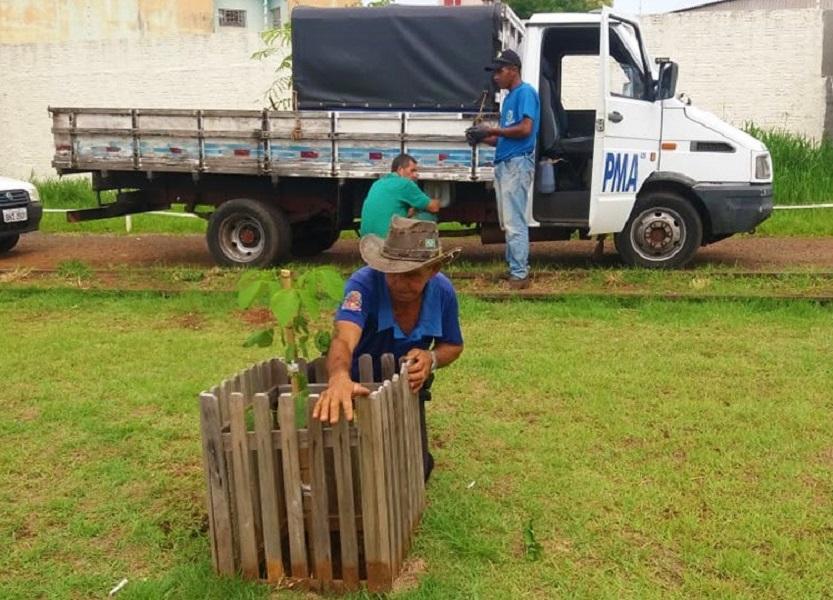 Secretaria de Meio Ambiente mantém plantios de árvores pelo Programa Assis + Verde