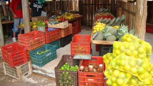 Prefeitura lança oficialmente na APRUMAR o segundo Programa de Aquisição de Alimentos Municipal