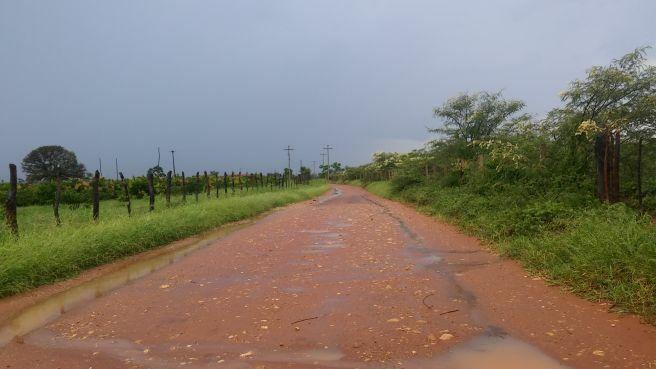 Chuvas trazem alívio para o campo e agricultores comemoram depois de longo período de estiagem