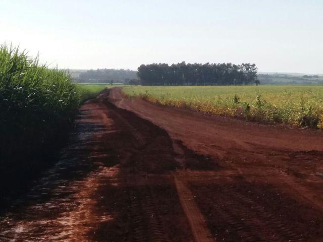 Áreas rurais são atingidas pela chuva e produtores ficam ilhados em Cândido Mota