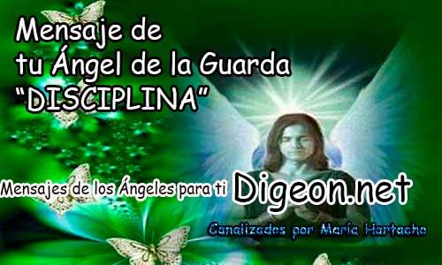 MENSAJE DE TU ÁNGEL DE LA GUARDA - DISCIPLINA