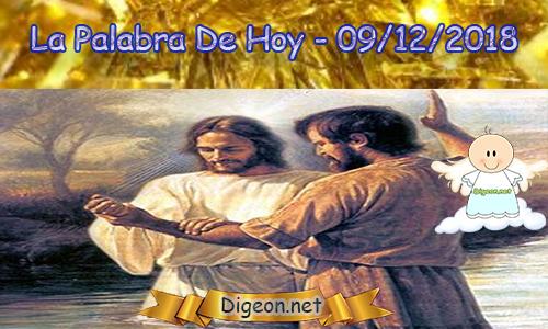 LA PALABRA DIARIA 09/12/2018 - Reflexión sobre el EL EVANGELIO DE HOY 09/12/2018: Me guía por el camino correcto.(Salmo 23:3)