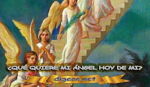 ¿QUÉ QUIERE MI ÁNGEL HOY DE MÍ? 17 de mayo + DECRETO DIVINO + MENSAJES DE LOS ÁNGELES, enseñanza metafísica, Que me dice mi ángel de la guarda hoy, y el consejo diario de los ángeles, con los angeles y sus mensajes, y cada día un mensaje para ti, junto al tarot de los ángeles y los mensajes gratis de los ángeles, mensaje de tu ángel para hoy 17 de mayo el mensaje de tus ángeles para ti con el pronostico de los ángeles hoy 17 de mayo. te dice tu ángel , con rituales angelicales, también el tarot de los ángeles, ángeles y arcángeles, la voz de los ángeles, comunicándote con tu ángel,comunicando con los ángeles, los ángeles y sus mensajes para hoy, cada día un mensaje para ti, ángel del día gratis, todo sobre la metafísica y palabras de metafísica, que quiere mi ángel de mi, mensajes angelicales
