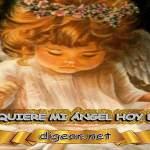 ¿QUÉ QUIERE MI ÁNGEL HOY DE MÍ? 20 de mayo + DECRETO DIVINO + MENSAJES DE LOS ÁNGELES, enseñanza metafísica, Que me dice mi ángel de la guarda hoy, y el consejo diario de los ángeles, con los Ángeles y sus mensajes, y cada día un mensaje para ti, junto al tarot de los ángeles y los mensajes gratis de los ángeles, mensaje de tu ángel para hoy 20 de mayo el mensaje de tus ángeles para ti con el pronostico de los ángeles hoy 20 de mayo. te dice tu ángel, con rituales angelicales, también el tarot de los ángeles, ángeles y arcángeles, la voz de los ángeles, comunicándote con tu ángel, comunicando con los ángeles, los ángeles y sus mensajes para hoy, cada día un mensaje para ti, ángel del día gratis, todo sobre la metafísica y palabras de metafísica, que quiere mi ángel de mi, mensajes angelicales
