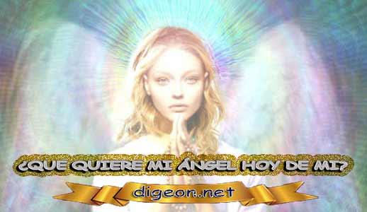 ¿QUÉ QUIERE MI ÁNGEL HOY DE MÍ? 08 de Mayo + DECRETO DIVINO + MENSAJES DE LOS ÁNGELES, enseñanza metafísica, Que me dice mi ángel de la guarda hoy, y el consejo diario de los ángeles, con los ángeles y sus mensajes, y cada día un mensaje para ti, junto al tarot de los ángeles y los mensajes gratis de los ángeles, mensaje de tu ángel para hoy 08 de mayo y el mensaje de tus ángeles para ti con el pronostico de los ángeles hoy 08 de mayo. te dice tu ángel, con rituales angelicales, también el tarot de los ángeles, ángeles y arcángeles, la voz de los ángeles, comunicándote con tu ángel, comunicando con los ángeles, los ángeles y sus mensajes para hoy, cada día un mensaje para ti, ángel del día gratis, todo sobre la metafísica y palabras de metafísica, que quiere mi ángel de mí, el mensaje de mi ángel de hoy