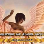 ¿QUÉ QUIERE MI ÁNGEL HOY DE MÍ? 15 de septiembre + DECRETO DIVINO + MENSAJES DE LOS ÁNGELES, enseñanza metafísica, mensajes angelicales, el consejo diario de los ángeles, con los Ángeles y sus mensajes, cada día un mensaje para ti, tarot de los ángeles, mensajes gratis de los ángeles, mensaje de tu ángel para hoy 07 de septiembre, pronóstico de los ángeles hoy