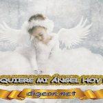¿QUÉ QUIERE MI ÁNGEL HOY DE MÍ? 14 de NOVIEMBRE + DECRETO DIVINO + MENSAJES DE LOS ÁNGELES, enseñanza metafísica, mensajes angelicales, el consejo diario de los ángeles, con los Ángeles y sus mensajes, cada día un mensaje para ti, tarot de los ángeles, mensajes gratis de los ángeles, mensaje de tu ángel para hoy 14 de noviembre, pronóstico de los ángeles hoy, reiki, palabra de dios hoy, evangelio del día, espiritualidad,lecturas del día, lecturas del día de hoy,evangelio del domingo,dios, evangelio de hoy, san juan de dios,jesucristo, jesus, inri, cristo, holistico, avatar