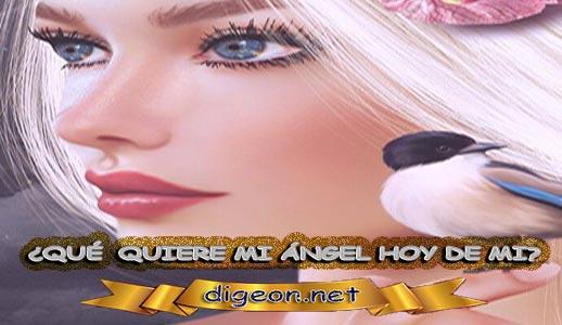 ¿QUÉ QUIERE MI ÁNGEL HOY DE MÍ? 09 de diciembre + DECRETO DIVINO + MENSAJES DE LOS ÁNGELES, enseñanza metafísica, mensajes angelicales, el consejo diario de los ángeles, con los Ángeles y sus mensajes, cada día un mensaje para ti, tarot de los ángeles, mensajes gratis de los ángeles, mensaje de tu ángel para hoy 09 de diciembre, pronóstico de los ángeles hoy, reiki, palabra de dios hoy, evangelio del día, espiritualidad,lecturas del día, lecturas del día de hoy,evangelio del domingo,dios, evangelio de hoy, san juan de dios,jesucristo, jesus, inri, cristo