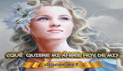 ¿QUÉ QUIERE MI ÁNGEL HOY DE MÍ? 19 de febrero + DECRETO DIVINO + evangelio del día de hoy 19 de febrero, MENSAJES DE LOS ÁNGELES, tu ángel, mensajes angelicales, el consejo diario de los ángeles, los Ángeles y sus mensajes, cada día un mensaje para ti, tarot de los ángeles, mensajes gratis de los ángeles, mensaje de tu ángel para hoy 19 de febrero, pronóstico de los ángeles hoy, reiki, palabra de dios hoy, evangelio del día, espiritualidad, lecturas del día, lecturas del día de hoy 19/02/2020, evangelio del domingo 19/02/2020, dios, evangelio de hoy 19/02/2020, san juan de dios, jesucristo, jesus, inri, cristo