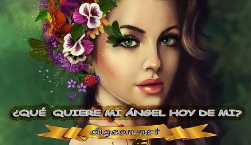 ¿QUÉ QUIERE MI ÁNGEL HOY DE MÍ? 14 de febrero + DECRETO DIVINO + evangelio del día de hoy 14 de febrero, MENSAJES DE LOS ÁNGELES, tu ángel, mensajes angelicales, el consejo diario de los ángeles, los Ángeles y sus mensajes, cada día un mensaje para ti, tarot de los ángeles, mensajes gratis de los ángeles, mensaje de tu ángel para hoy 14 de febrero, pronóstico de los ángeles hoy, reiki, palabra de dios hoy, evangelio del día, espiritualidad, lecturas del día, lecturas del día de hoy 14/02/2020, evangelio del domingo 14/02/2020, dios, evangelio de hoy 14/02/2020, san juan de dios, jesucristo, jesus, inri, cristo