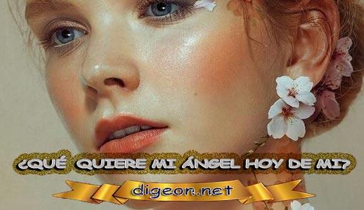 ¿QUÉ QUIERE MI ÁNGEL HOY DE MÍ? 15 de febrero + DECRETO DIVINO + evangelio del día de hoy 15 de febrero, MENSAJES DE LOS ÁNGELES, tu ángel, mensajes angelicales, el consejo diario de los ángeles, los Ángeles y sus mensajes, cada día un mensaje para ti, tarot de los ángeles, mensajes gratis de los ángeles, mensaje de tu ángel para hoy 15 de febrero, pronóstico de los ángeles hoy, reiki, palabra de dios hoy, evangelio del día, espiritualidad, lecturas del día, lecturas del día de hoy 15/02/2020, evangelio del domingo 15/02/2020, dios, evangelio de hoy 15/02/2020, san juan de dios, jesucristo, jesus, inri, cristo