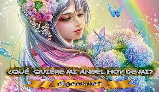 ¿QUÉ QUIERE MI ÁNGEL HOY DE MÍ? 04 de Mayo + DECRETO DIVINO + evangelio del día de 04 de Mayo, MENSAJES DE LOS ÁNGELES, tu ángel, mensajes angelicales, el consejo diario de los ángeles, los Ángeles y sus mensajes, cada día un mensaje para ti, tarot de los ángeles, mensajes gratis de los ángeles, mensaje de tu ángel para 04 de Mayo, pronóstico de los ángeles hoy, reiki, palabra de dios hoy, evangelio del día, espiritualidad, lecturas del día, lecturas del día de hoy 04 de Mayo, evangelio del domingo 04 de Mayo, dios, evangelio de hoy 04 de Mayo, san juan de dios, jesucristo, jesus, inri, cristo