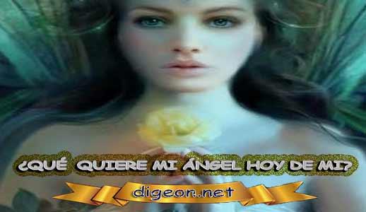¿QUÉ QUIERE MI ÁNGEL HOY DE MÍ? 13 de agosto + DECRETO DIVINO + evangelio del día, MENSAJES DE LOS ÁNGELES, tu ángel, mensajes angelicales, el consejo diario de los ángeles, los Ángeles y sus mensajes, cada día un mensaje para ti, tarot de los ángeles, mensajes gratis de los ángeles, mensaje de tu ángel, pronóstico de los ángeles hoy, reiki, palabra de dios hoy, evangelio del día, espiritualidad, lecturas del día, lecturas del día de hoy, evangelio del domingo, dios, evangelio de hoy, san juan de dios, jesucristo, jesus, inri, cristo