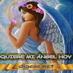¿QUÉ QUIERE MI ÁNGEL HOY DE MÍ? 21 de Octubre + DECRETO DIVINO + evangelio del día, MENSAJES DE LOS ÁNGELES, tu ángel, mensajes angelicales, el consejo diario de los ángeles, los Ángeles y sus mensajes, cada día un mensaje para ti, tarot de los ángeles, mensajes gratis de los ángeles, mensaje de tu ángel, pronóstico de los ángeles hoy, reiki, palabra de dios hoy, evangelio del día, espiritualidad, lecturas del día, lecturas del día de hoy, evangelio del domingo, dios, evangelio de hoy, san juan de dios, jesucristo, jesus, inri, cristo
