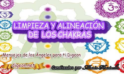 Esta es una LIMPIEZA Y ALINEACIÓN DE CHAKRAS CON LOS ARCÁNGELES, Limpieza y alineación de los chakras, Chakras, chacras, los chakras, los ángeles y los chakras, los 7 chakras, chakra raíz, chakra plexo solar, svadhisthana, chacras del cuerpo, como alinear los chakras, limpiar los chakras, chakra sacro, chakra corazón, primer chakra, chakra del corazón, chakras significado, chakras simbolos, meditacion guiada, meditación, meditacion trascendental, aprender a meditar, meditacion para principiantes, meditacion de la mañana
