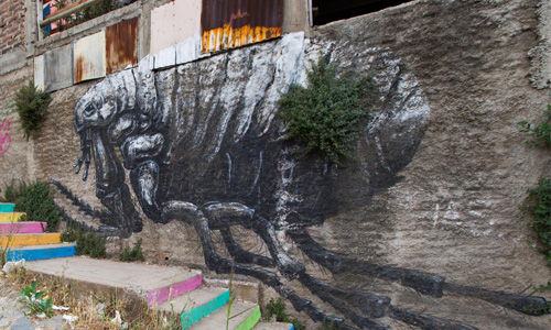 Roa Arte Urbano Chile - Digerible