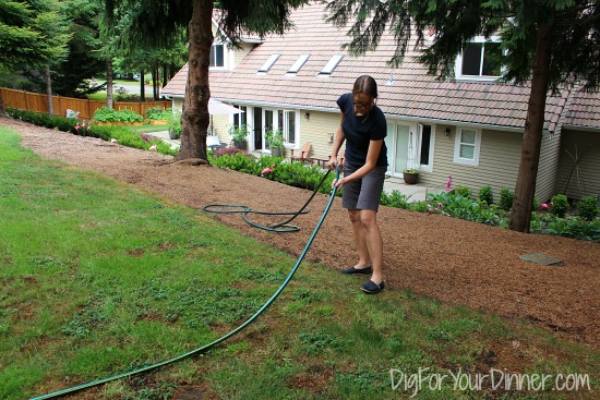 using a hose to create a garden border