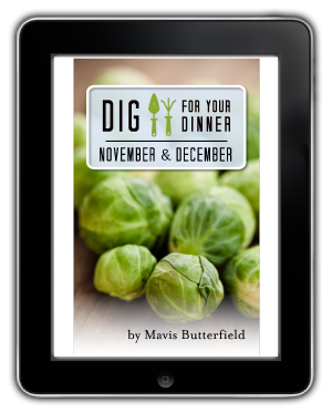 November ebook