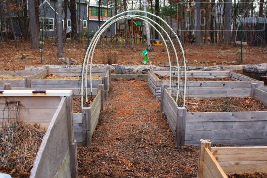 winter garden trellis