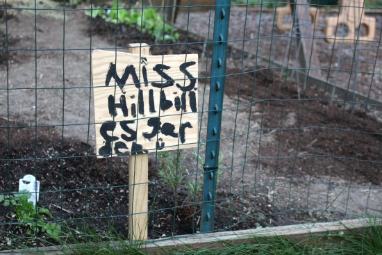 mrs hillbilly