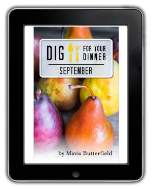 september ebook
