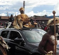 Paramount Chief Mpezni of the Ngoni arrives at Mutenguleni during the 2017 N'cwala ceremony in Chipata