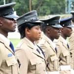 police parade 3