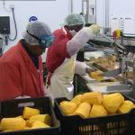 Ferngroove secures $30 million to boost local agro-processing