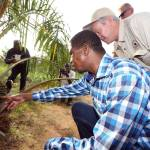 Stop misleading Zambians on ZamPalm viability, it's a vote-seeking bottomless pit