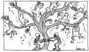 Darwin's tree topples