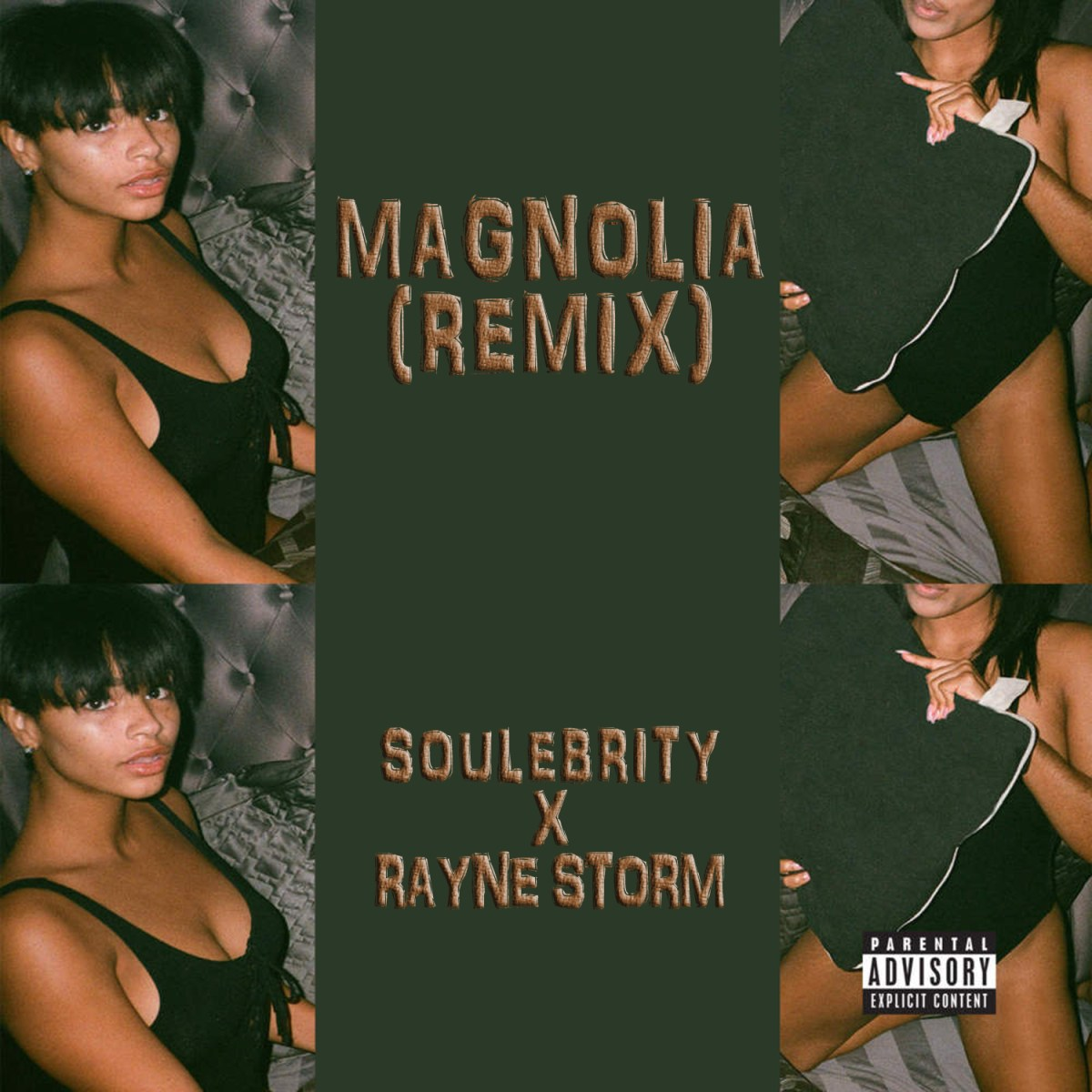 Soulebrity & Rayne Storm - Magnolia (Remix)