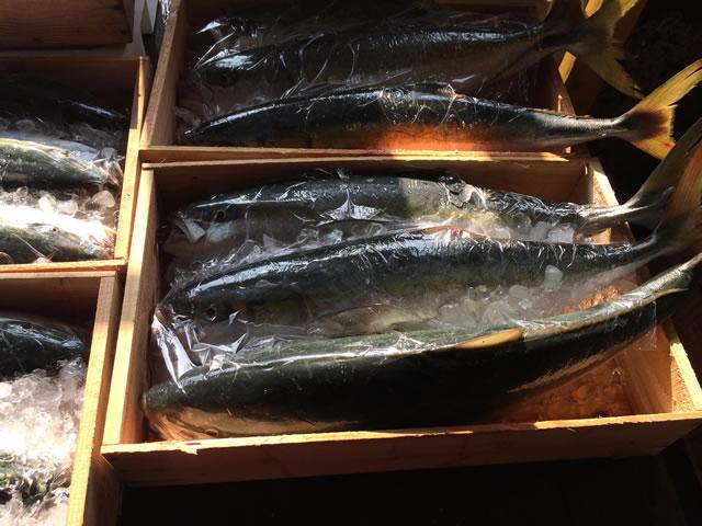 report-131109-nagahama-sengyo-market08