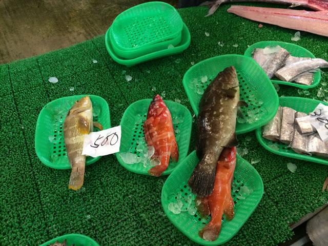 report-131109-nagahama-sengyo-market14