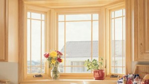 Bay Window Replacements
