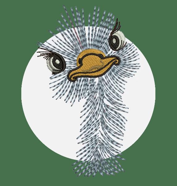 Male-Ostrich