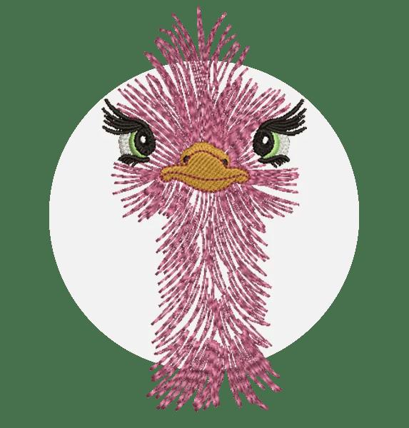 Ostrich-Female