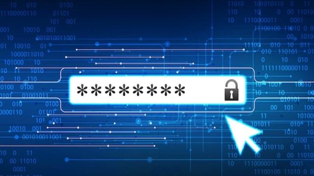 password theft rise