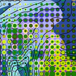 Skrova-Samples are parts of a digital analysis and graphical interpretation of multiple Terrain Attributes at different scales   Marc Ihle