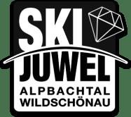 90 lpogo skijuwel_bw