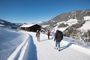 Alpine Studio Fieldtrip to Alpbach | Foto: Marc Ihle