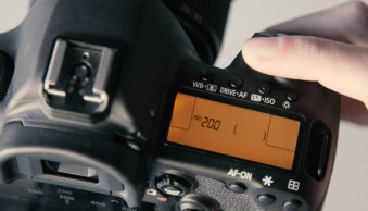 What Is ISO? A Simple Guide to ISO in Photography