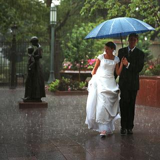 Chuva de fotografia de casamento