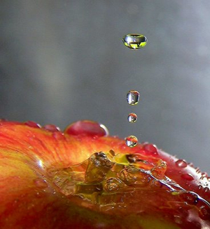 Water-Droplets-Photography