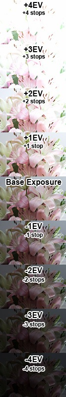 Exposure variations
