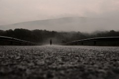 246/365: out of the fog (by ~shepdc~)
