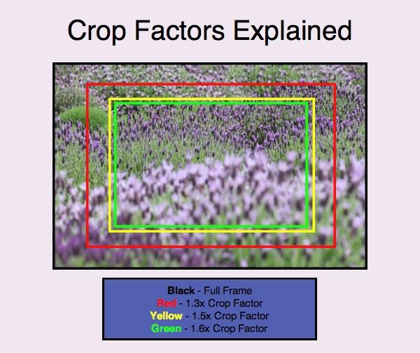 full frame vs crop sensor