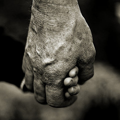 Grandad's Guiding Hand (by malcyL)