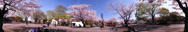 360° panorama at Higashiyama Zoo