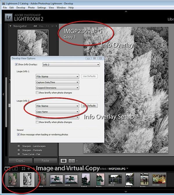 Virtual Copies in Lightroom_5.jpg