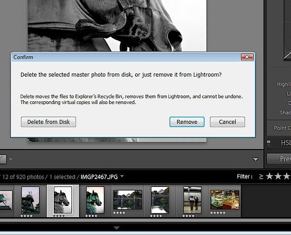 Virtual Copies in Lightroom-delete2.jpg